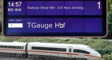 tg ice
